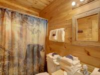 BATHROOM (MAIN LEVEL) at MISS BEE HAVEN in Sevier County TN