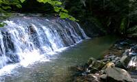 WATERFALL at UP A CREEK in Sevier County TN