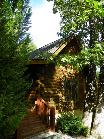 Gatlinburg Cabin Rentals_Apple Jack Hollow_wooded privacy