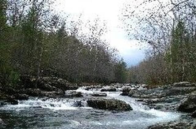 Rapids on Pigeon River