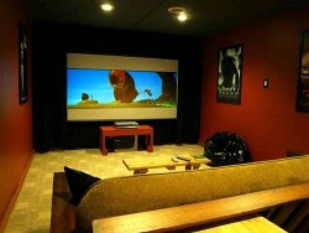sleeper futon in theater room
