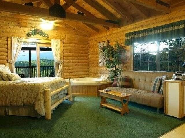 Queen log bed