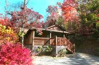 EXTERIOR (FALL) at HILLSIDE HAVEN in Sevier County TN