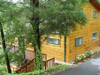 EXTERIOR at ALPINE VIEW in Gatlinburg TN