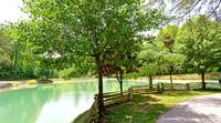 POND at GRAY WOLF in Sevier County TN