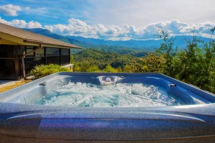Photo of Leconte Mountain Breeze (new Listing)