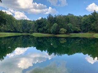 6 acre fishing lake located two minutes' walk from the cabin.