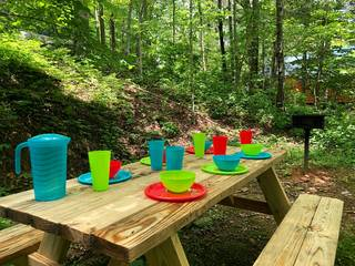 Picnic table with seating for 6 guests near the charcoal grill