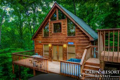 This Cabin Has Been Viewed 10 Times Today