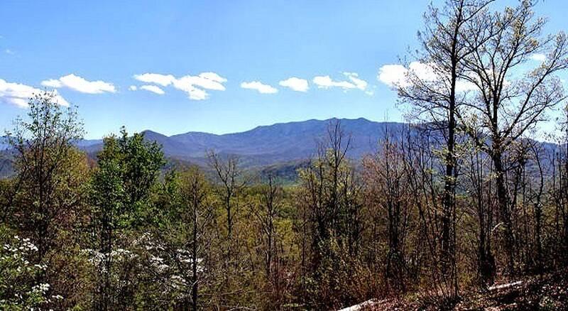 Summit View 24