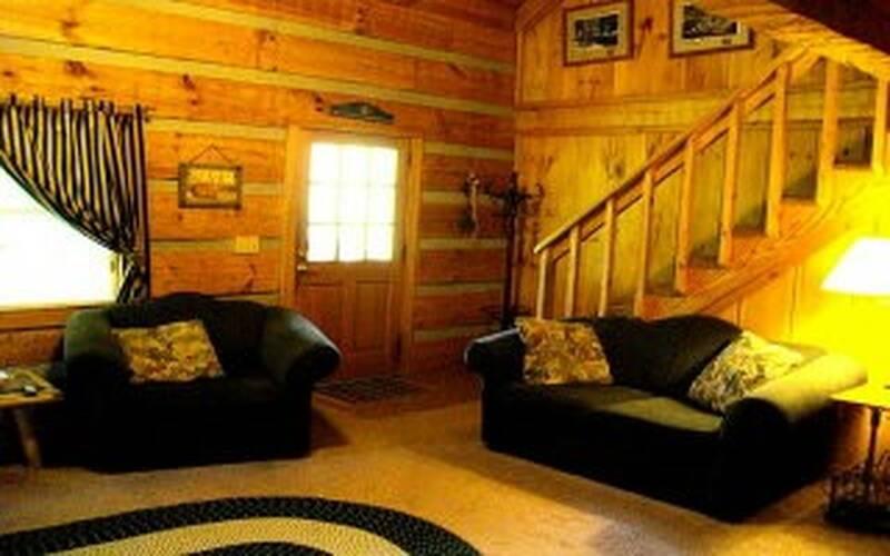 Hunny Tree Lodge 15