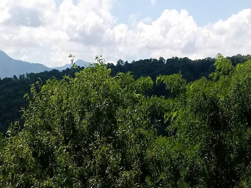 3303 Mountain Camelot 25