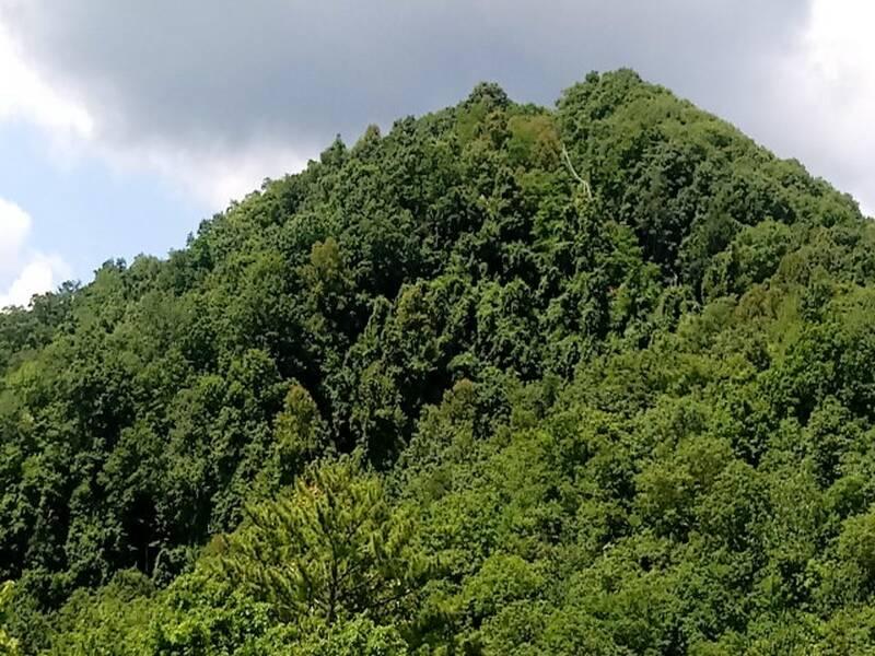 3303 Mountain Camelot 26