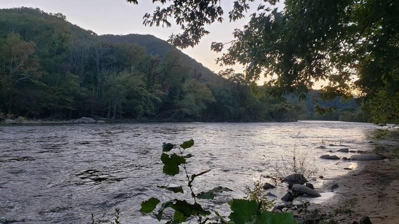 French Broad River Cabin 20
