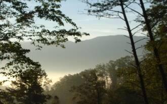 Mountain Mist Gatlinburg Cabin Rental
