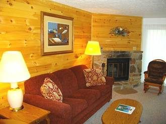 Ski View Condo #207 Condo in Gatlinburg TN