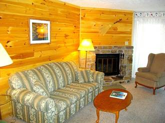 Ski View Condo #307 Condo in Gatlinburg TN
