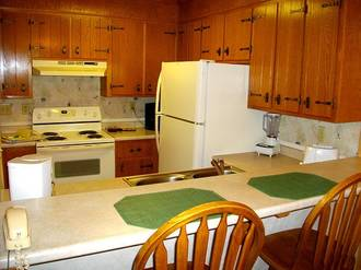 Ski View Condo #307 Gatlinburg Condo Rental