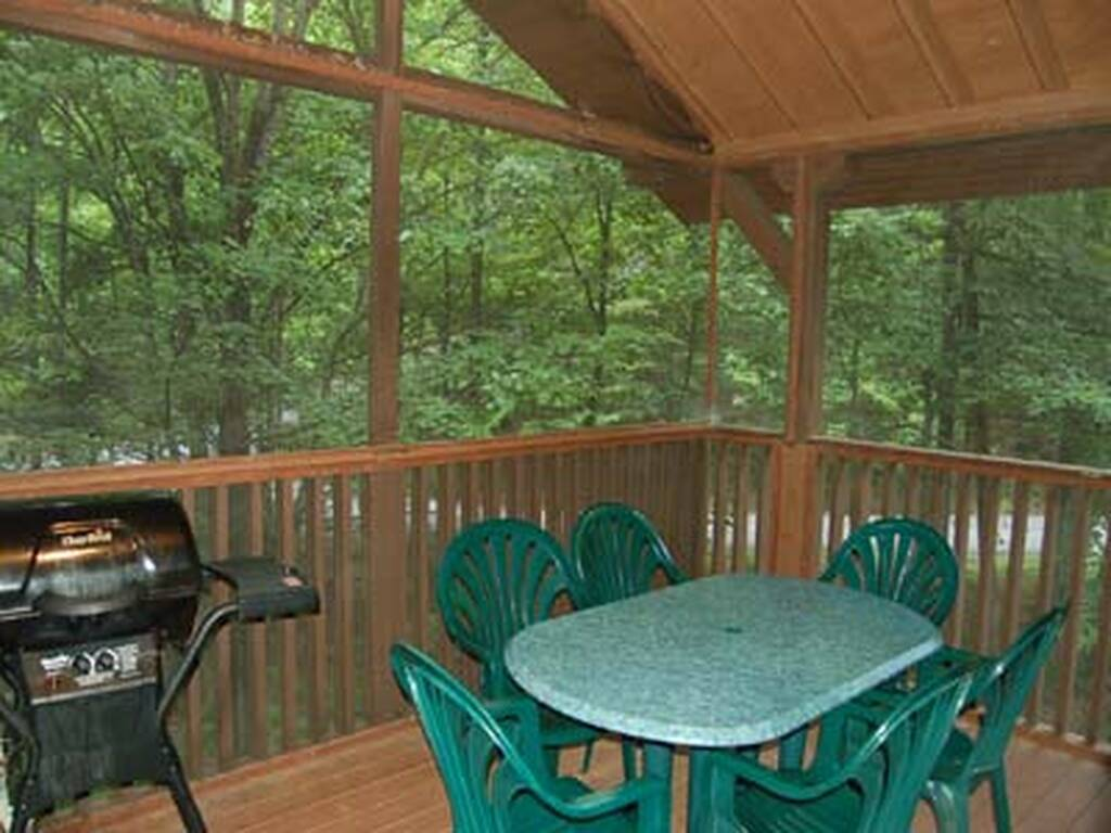 Screened Deck with Gas Grill