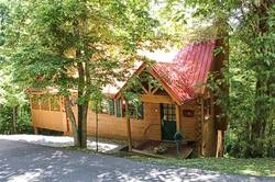 Hummingbird Haven Cabin