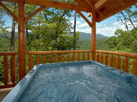 STARGAZER 1 Bedroom Cabin Rental