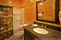 Smoky Mountain themed bathroom at The Big Moose Lodge