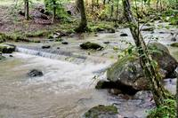 Enjoy nature's finest with a running stream