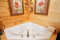 Jacuzzit tub - 2 bedroom cabin near Gatlinburg