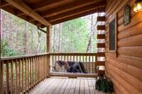 Swing all day while relaxing in a cabin close to Pigeon Forge and Gatlinburg