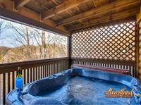 Pet Friendly Cabin - hot tub