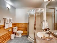 Full bathroom with a stand up shower