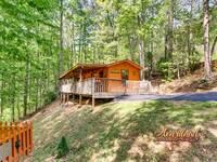 Affordable 1 bedroom cabin near Pigeon Forge and Gatlinburg
