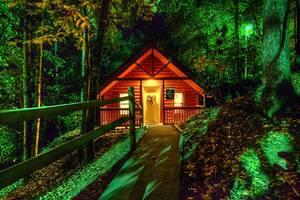 Burnin' Love cabin