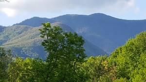 Mountain Serenity cabin