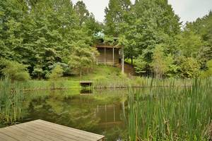 View of Cabin from Pond