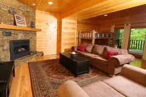 Large Den Downstairs with Gas Fireplace