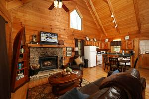 Living Room with Sleeper Sofa and Wood Burning Fireplace