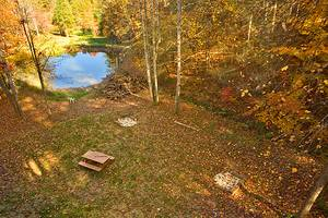 Fishing Pond Behind Cabin