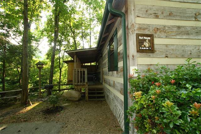 7 nut house 1 bedroom cabin at parkside cabin rentals for Pecan house