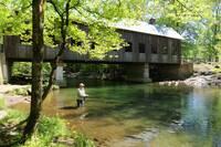 Cap's Fishin' Camp (542)
