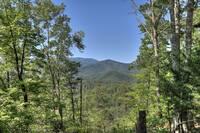 Mountain High View