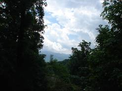 view from upper deck with tram view at When Pigs Fly in Gatlinburg TN