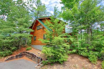 Orchid Hideaway 1 Bedroom Cabin Rental