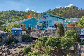 Ripley's Aquarium of the Smokies Gatlinburg Tennessee.