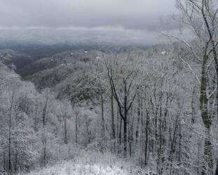 BellagioBea_snow view