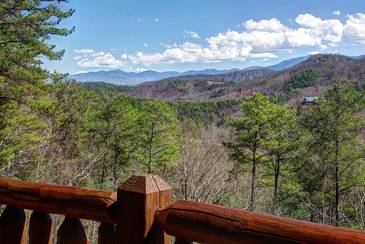 MTFBWYou_TT-May-the-Forest-be-with-You-2016-View-1-from-Deck-Main-Level