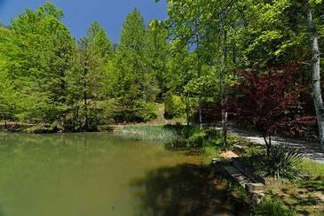 CozyCorner_Hidden Lakes Estate pic of lake
