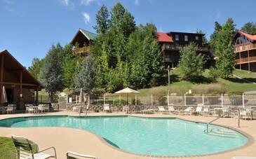 A Bear's Alpine Pool
