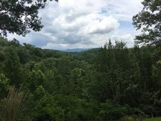 Tennessee Treasure