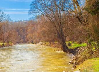 River Livin